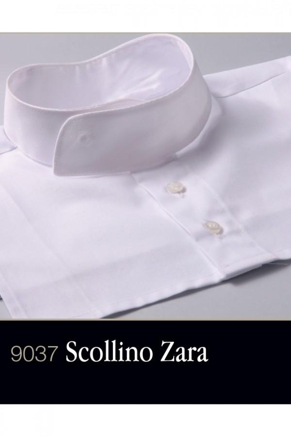 Scollino Zara